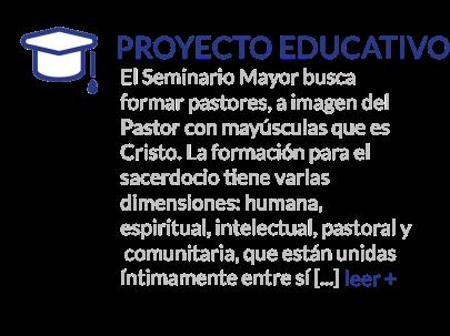 proyecto 33